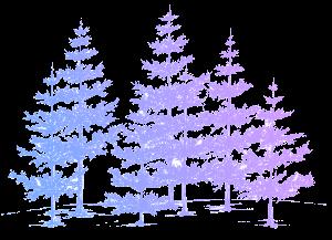 10 pine trees