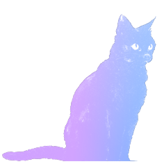 8 cat