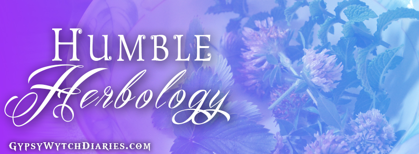 Humble Herbology Banner