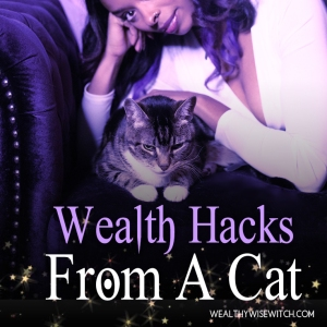cat wealth hacks wp